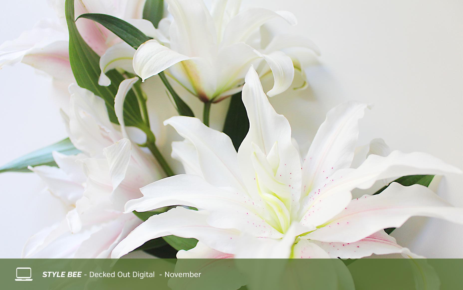 Style Bee - Digital Downloads - November
