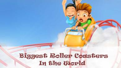 biggest-roller-coasters-in-the-world