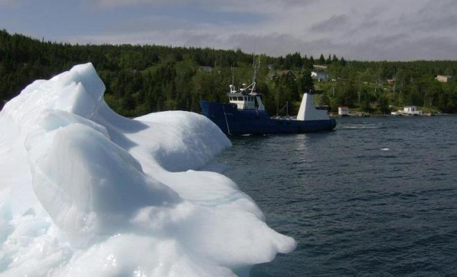 20,000-year-old iceberg