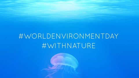 Happy World Environment Day + The Launch of Our Green Living Initiative