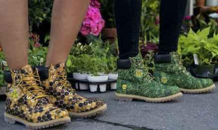 Lanzan botas eco-friendly de Timberland X Pharrell Williams