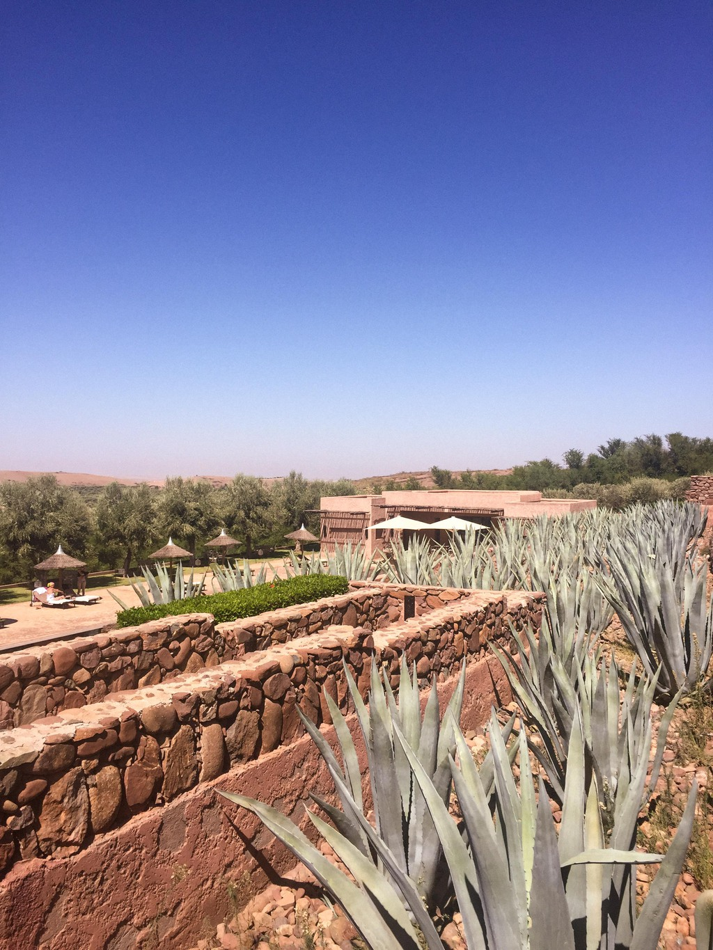 MY STAY AT LE PALAIS PAYSAN, MOROCCO
