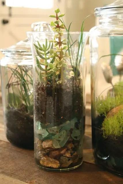 20 Great Diy Succulent Ideas Style Motivation