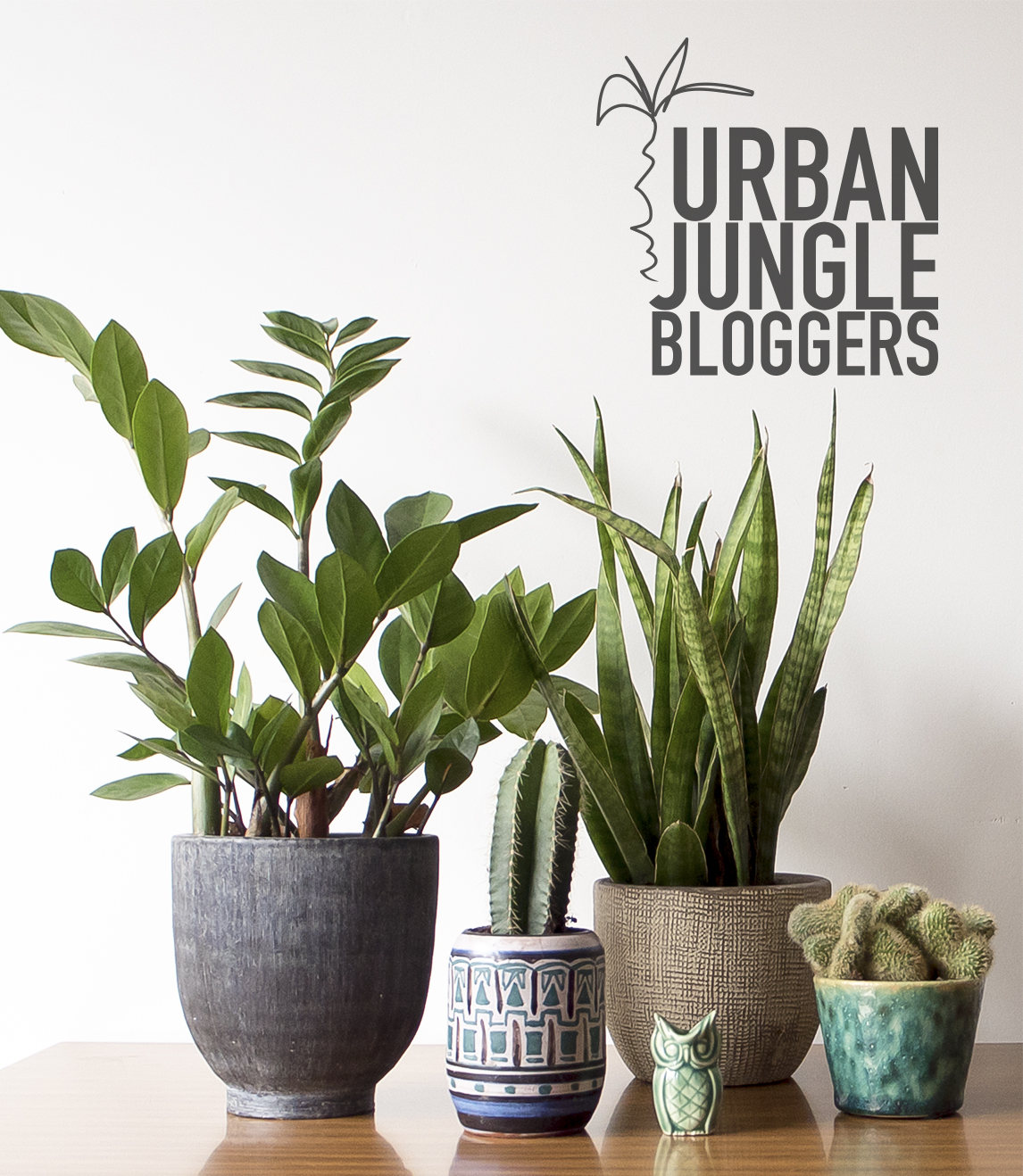 Jungle Animals | Urban Jungle Bloggers