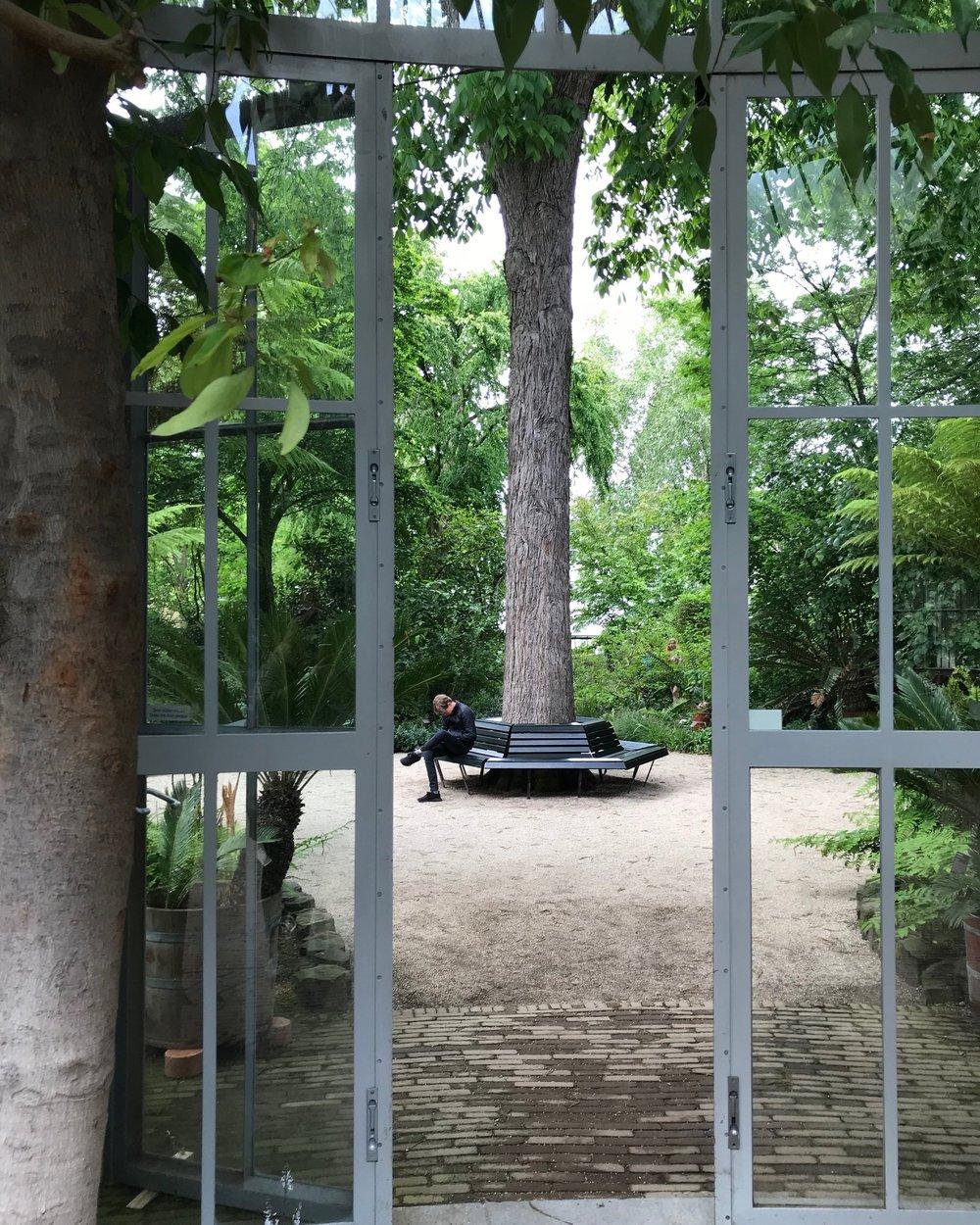 Hortus Amsterdam mr de Waal