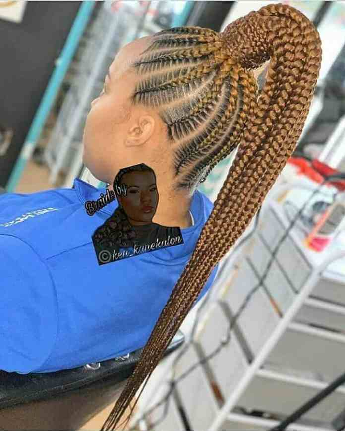 19 PHOTOS Splendid Box Braids For Ladies - Black Braided Hairstyles