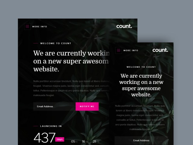 Free Website Template - Count 02