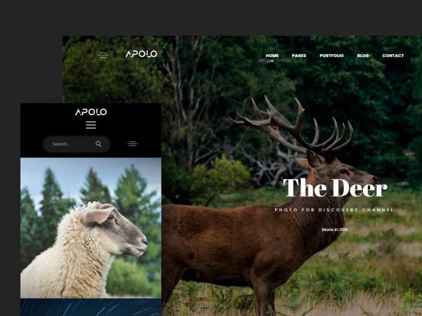 Apolo - Premium Portfolio HTML Template