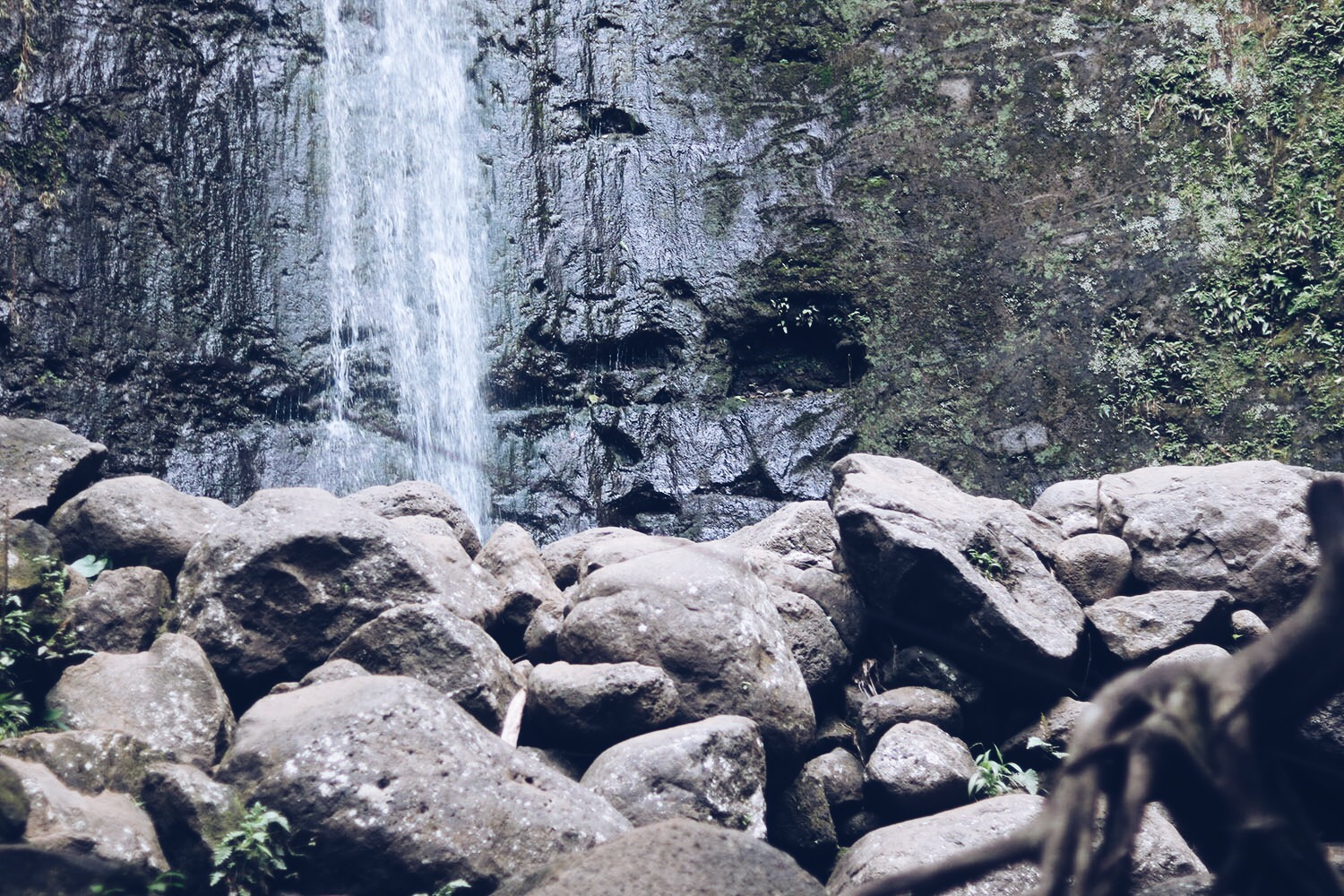 style-synopsis-manoa-falls