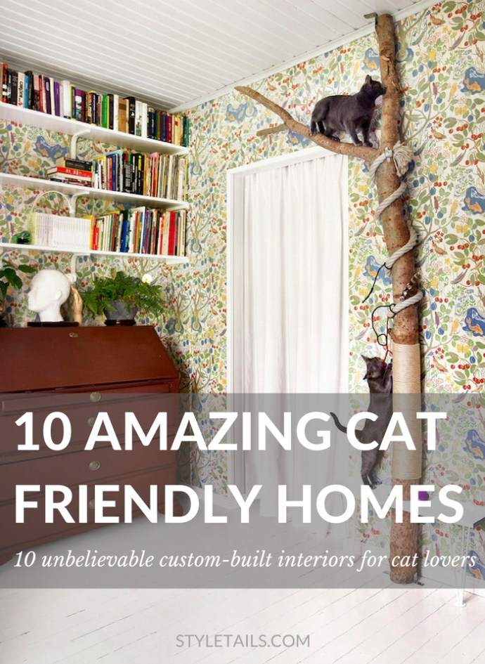 10 Amazing Cat Friendly Houses | STYLETAILS