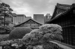 Japan Guide: A Photo Diary Of A Very Photogenic Country 10