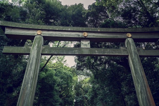 My Japan Trip Changed Me: A Photographic Japan Guide