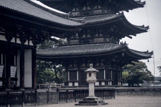 Have You Seen This Japanese Deer City? A Photo Diary of Nara, Osaka and Kyoto 14