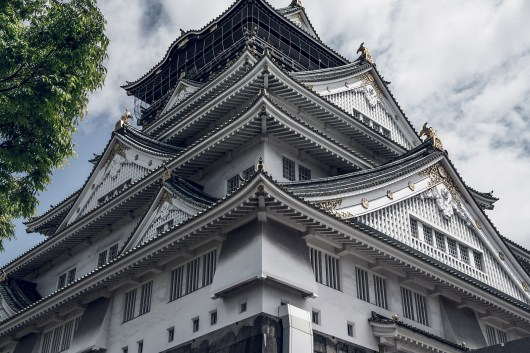 Have You Seen This Japanese Deer City? A Photo Diary of Nara, Osaka and Kyoto 22