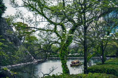 Have You Seen This Japanese Deer City? A Photo Diary of Nara, Osaka and Kyoto 25