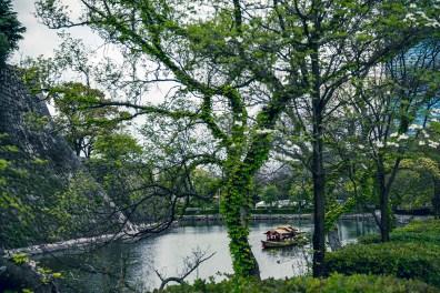 Have You Seen This Japanese Deer City? A Photo Diary of Nara, Osaka and Kyoto 25