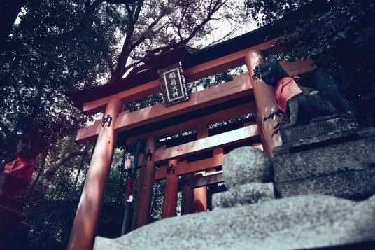Have You Seen This Japanese Deer City? A Photo Diary of Nara, Osaka (and an onsen experience) and Kyoto 7