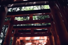 Have You Seen This Japanese Deer City? A Photo Diary of Nara, Osaka (and an onsen experience) and Kyoto 14