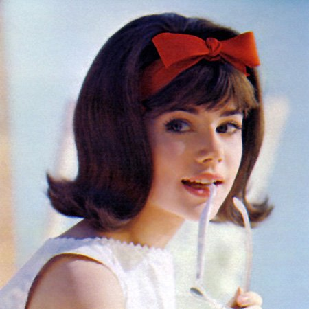 1960s Hairstyles for Women: Popular Looks | Stylezco | 450 x 450 jpeg 47kB