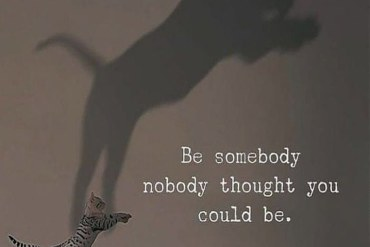 Be Somebody No Body Thought - Best Quotes Ideas
