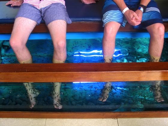 Water Bom Park, Bali | fish spa