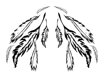 feathers - wings