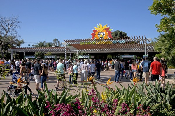San Diego Zoo centennial celebration #sdzoo100