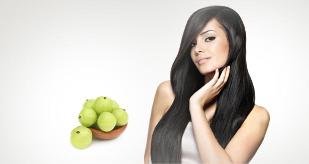 Image result for amla hair
