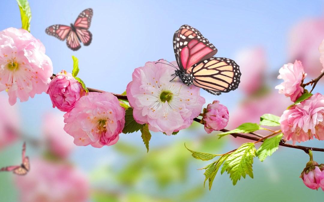 Primavera: 4 capispalla primaverili che non puoi non avere