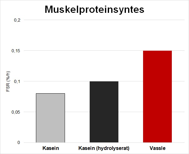 muskelproteinsyntes efter vassle vs kasein