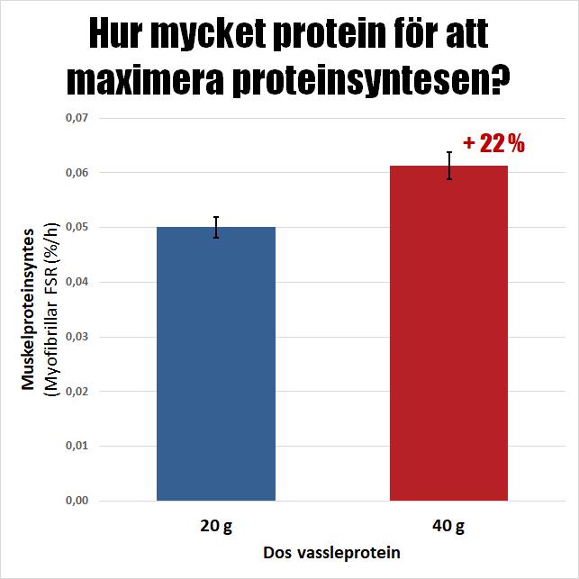 Hur mycket protein för att maximera proteinsyntesen