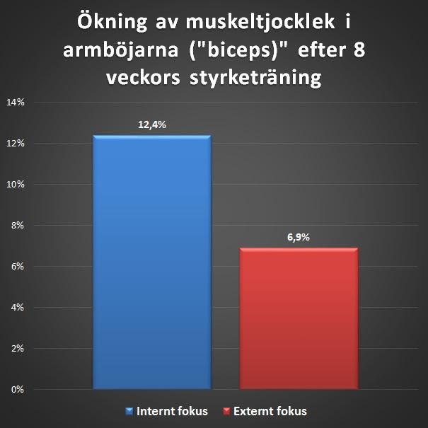 Ökning av muskeltjocklek i biceps