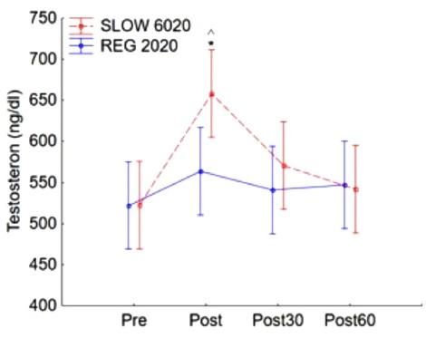 Långsamma repetitioner gav mer testosteron