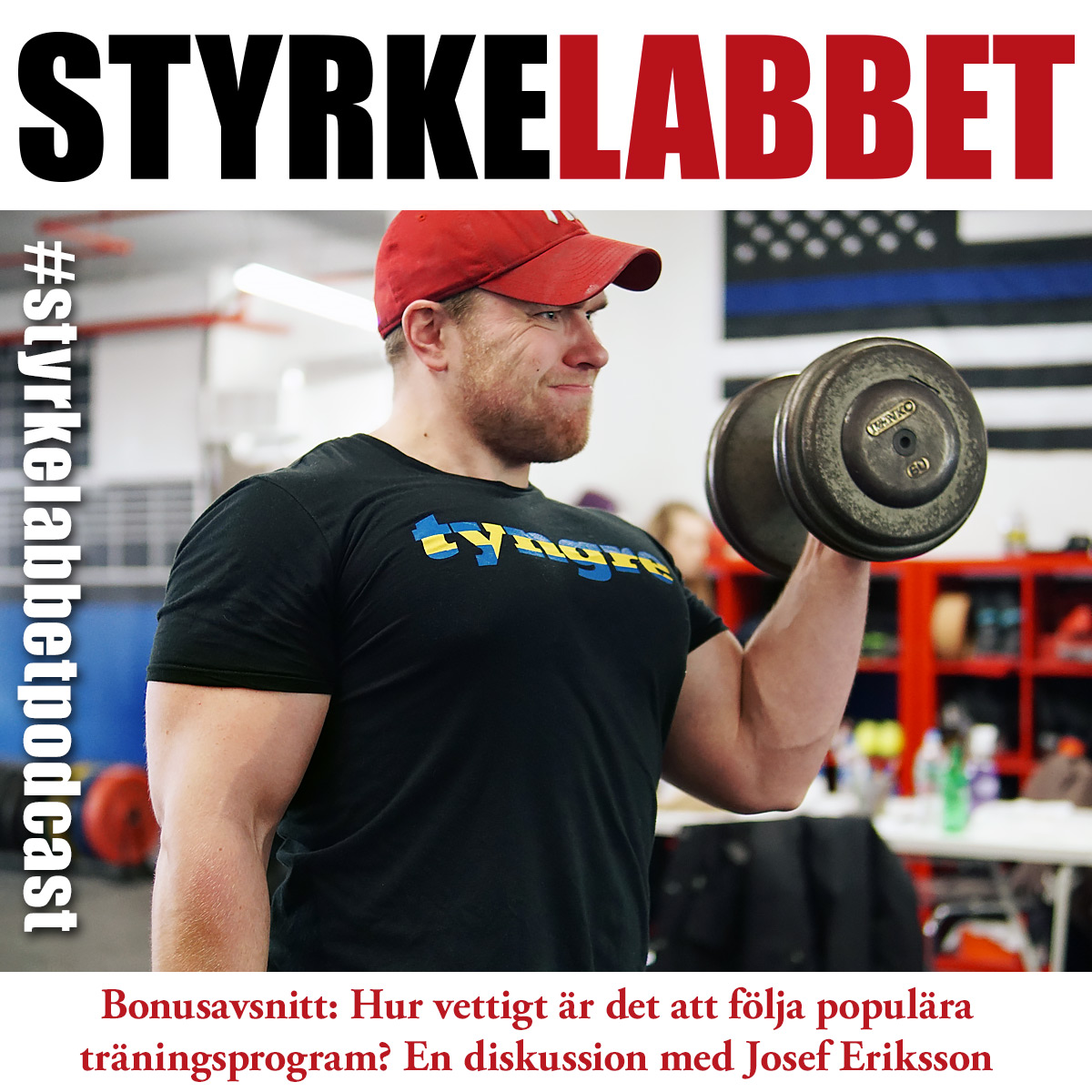 Styrkelabbet bonusavsnitt: Hur vettigt är det att följa populära träningsprogram? En diskussion med Josef Eriksson