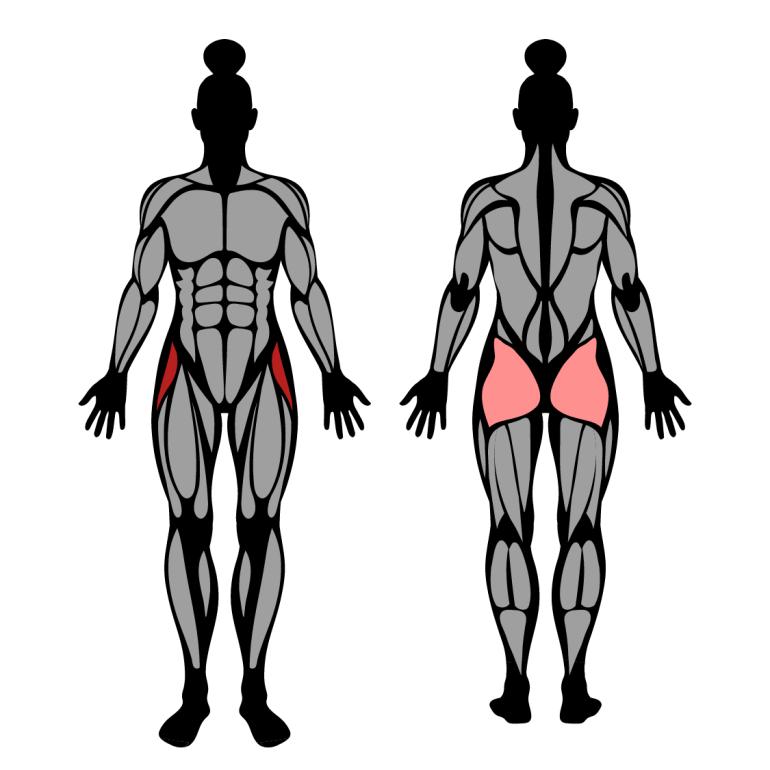Muskler som tränas av sidosteg mot band