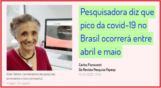 Pesquisadora diz que pico da covid-19 no Brasil ocorrerá entre abril e maio. Ou seja, a crise financeira está apenas começando.