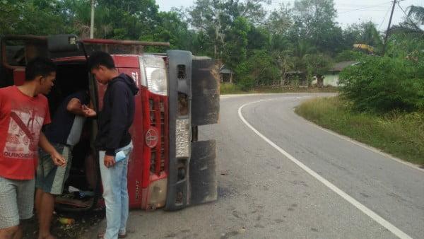 Truk Bermuatan Bibit Akasia Terjungkal di Desa Petani
