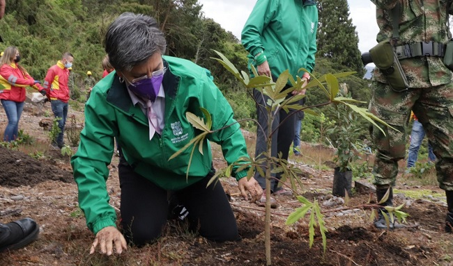 Alcaldesa Claudia López sembró el árbol número 100 mil de su administración