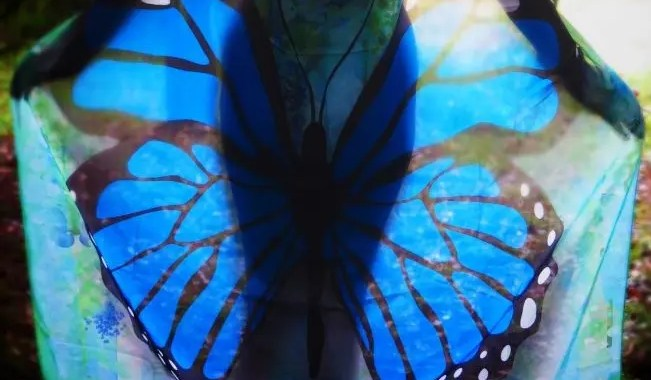 Naked with butterfly wings in a clearing in a wood