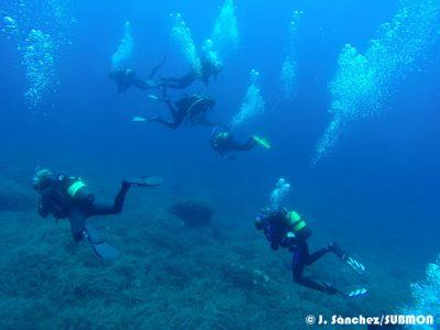 Buceo-respetuoso-Wildsea-divers