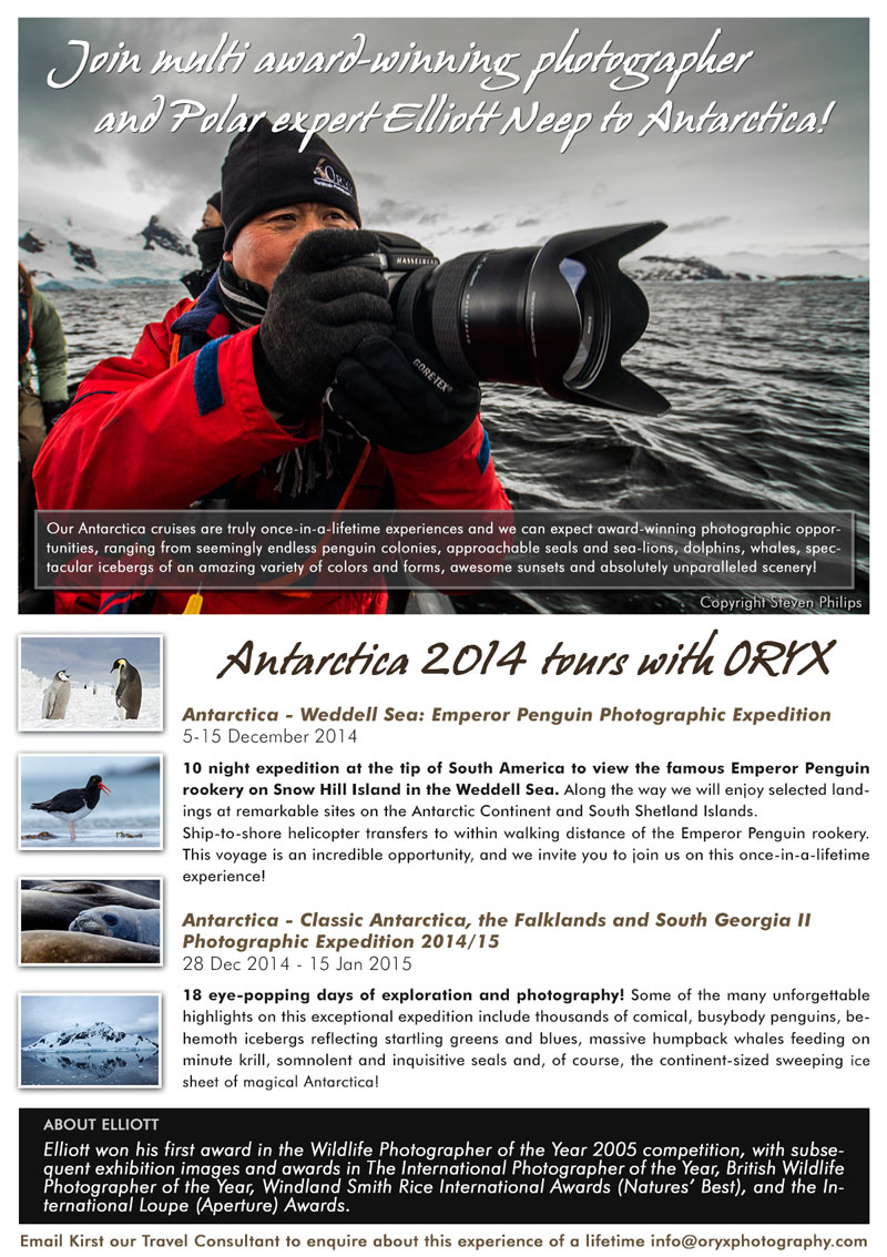 Oryx Photography Website Ad
