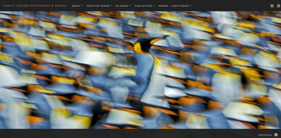 Marius Coetzee PhotoShelter Website