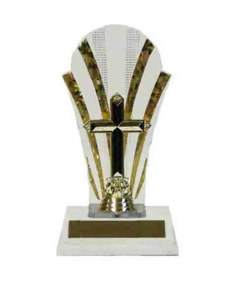 """8 1/2"""" Backdrop Trophy"""