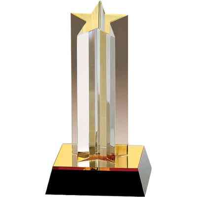 Single Star Acrylic Award