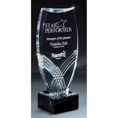 Lucite acrylic award