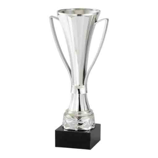 Modern Cup Silver AMC352