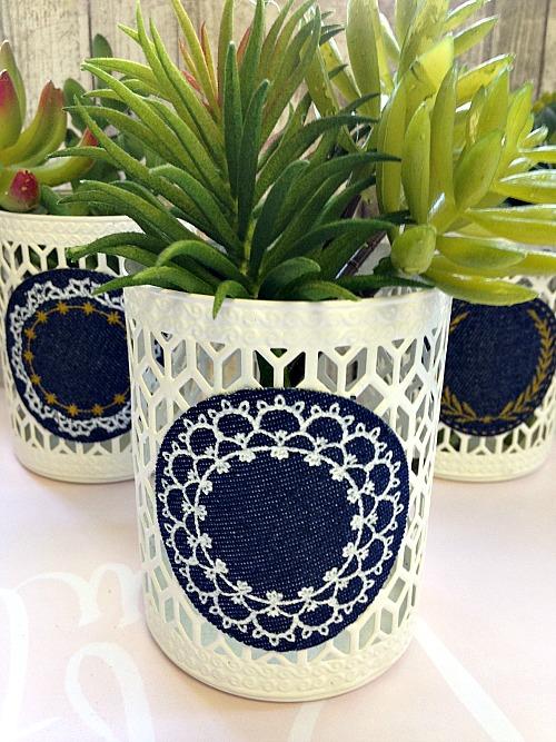 succulents-trio-dollar-store-diy-arranged