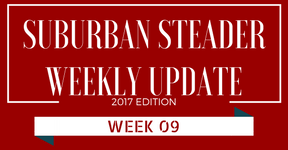 2017 Suburban Steader Update – Week 09