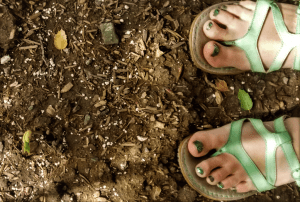toes and soil with bean sprouting