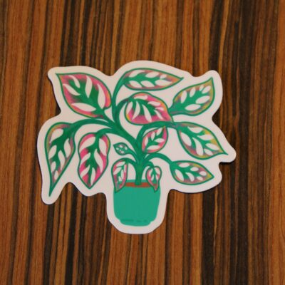 Swiss cheese plant sticker